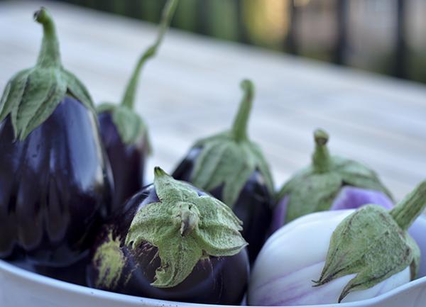 Eggplant on end